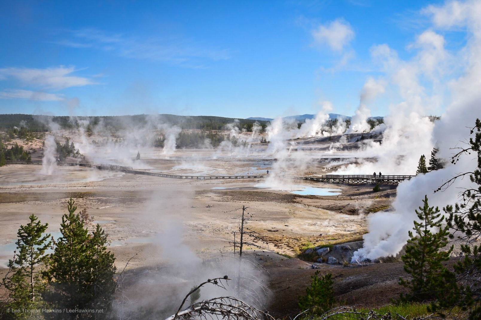 Geysers and got springs bellow hot water and steam across a grey landscape that looks like another planet.