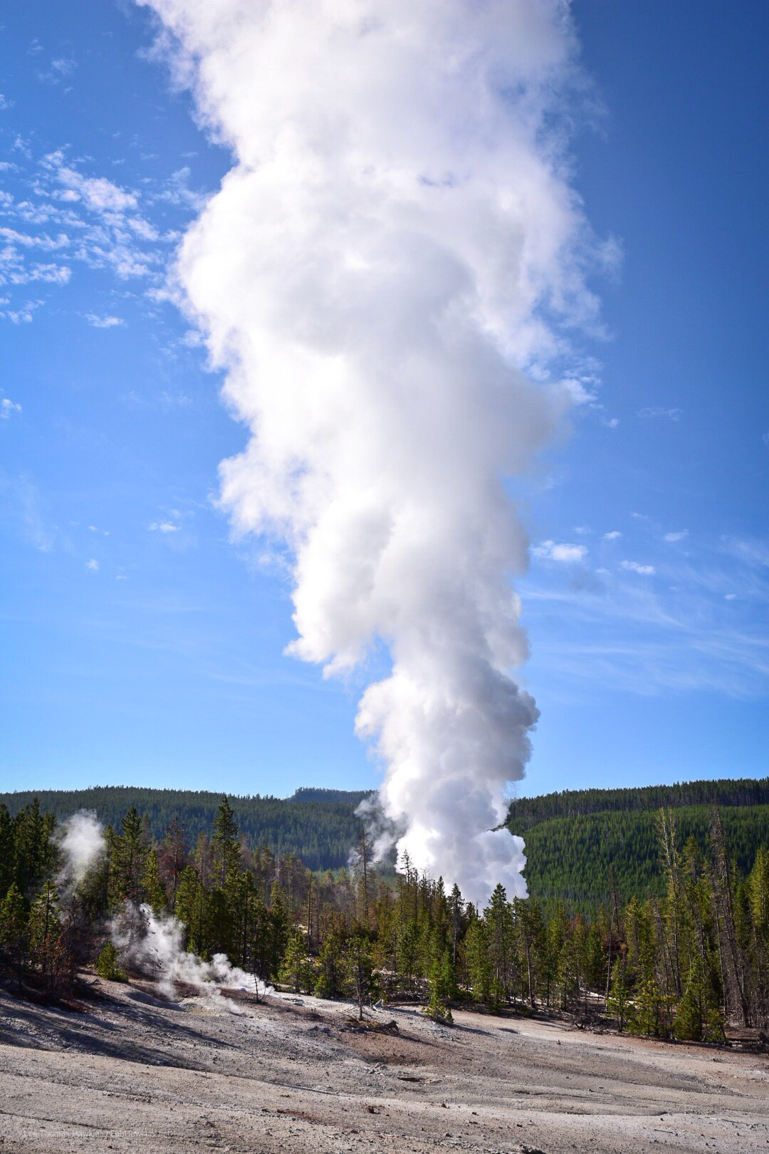 A huge plume of steam rises from a geyser.